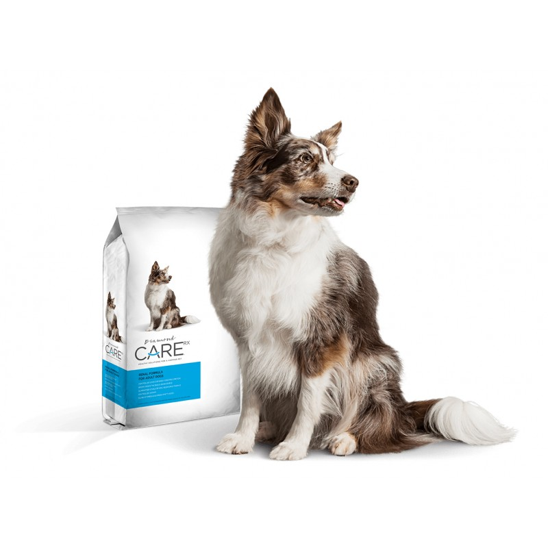 Diamond Care Renal Formula Adult Dogs 11.34 Kg